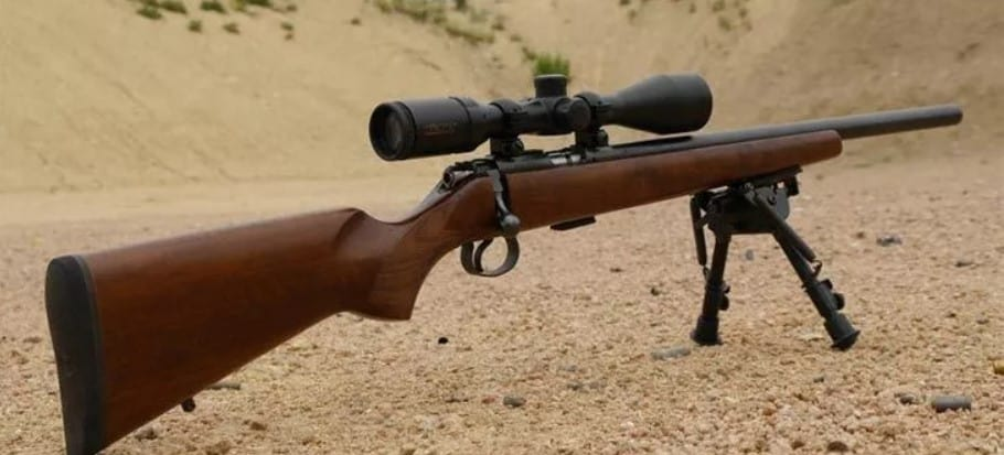 Best Scope for .17 HMR Rifles