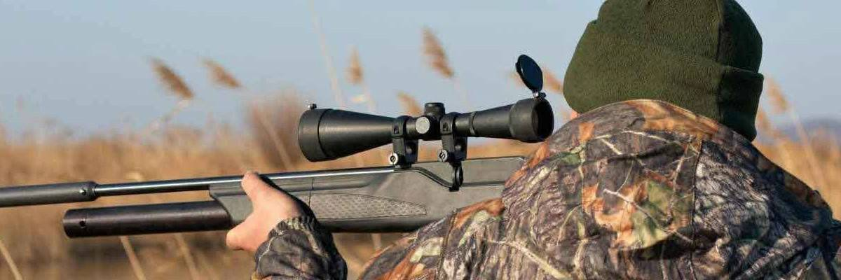 Rifle Scopes Basics