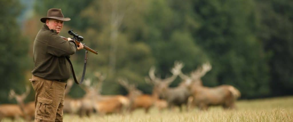 places to hunt whitetail deer